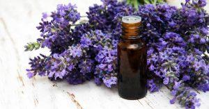 lavender-essential-oil-918x482
